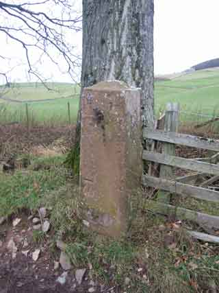 GATEPOST-DALEMAIN